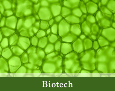 Home Page Biotech Picture