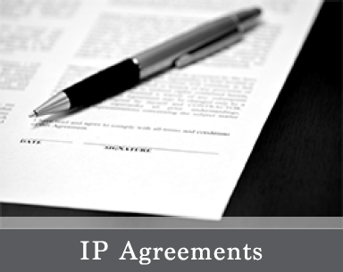Home Page IP Agreements Picture